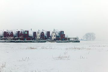 Helwerd im Winter von Evert Jan Luchies