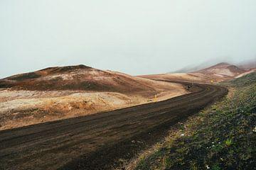 Eenzame grindweg in IJsland van Shanti Hesse