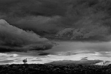 Einsamkeit von Johan Zwarthoed