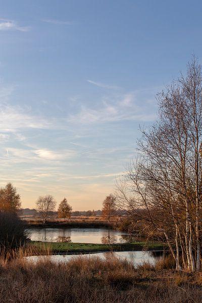 Kalmerend herfst landschap. van Anjo ten Kate