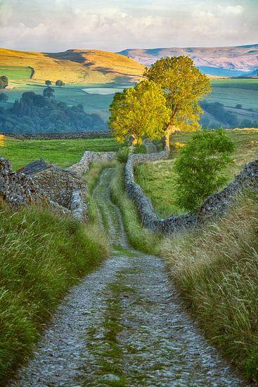 Yorkshire Dales von Lars van de Goor