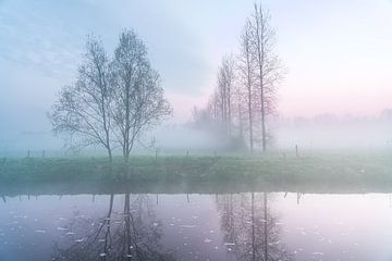 Aan den Dender in idegem op een mistige morgen van Marcel Derweduwen