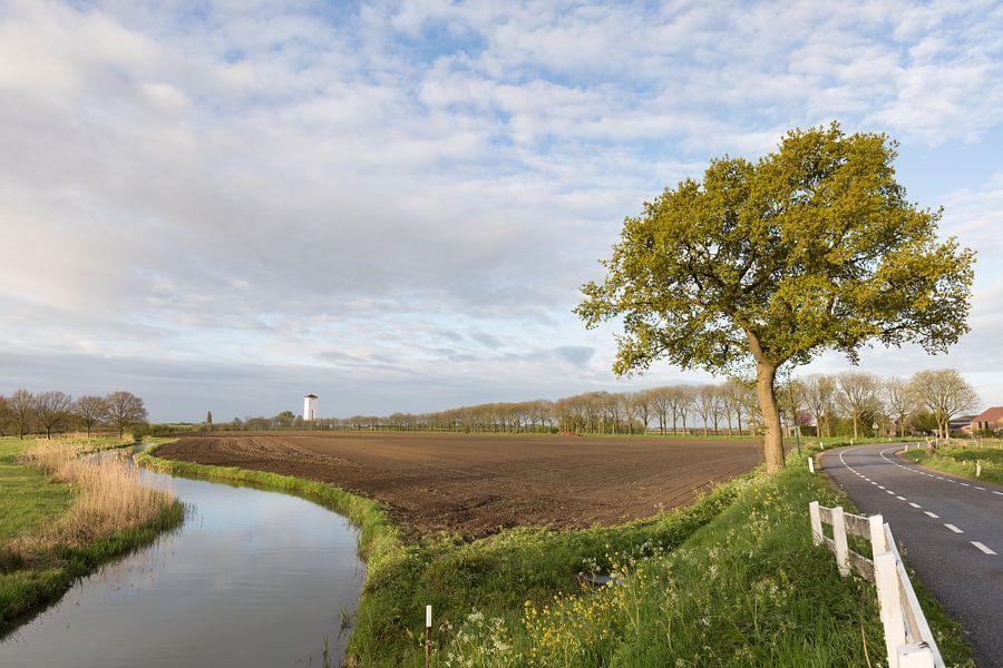 De oude Kromme Rijn