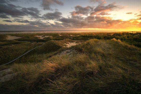 Sonnenuntergang über den Dünen