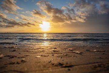 sonnenuntergang gans saltelande zeeland