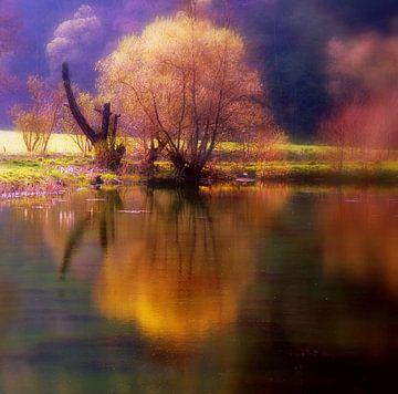 Sinfonie am See von Vera Laake