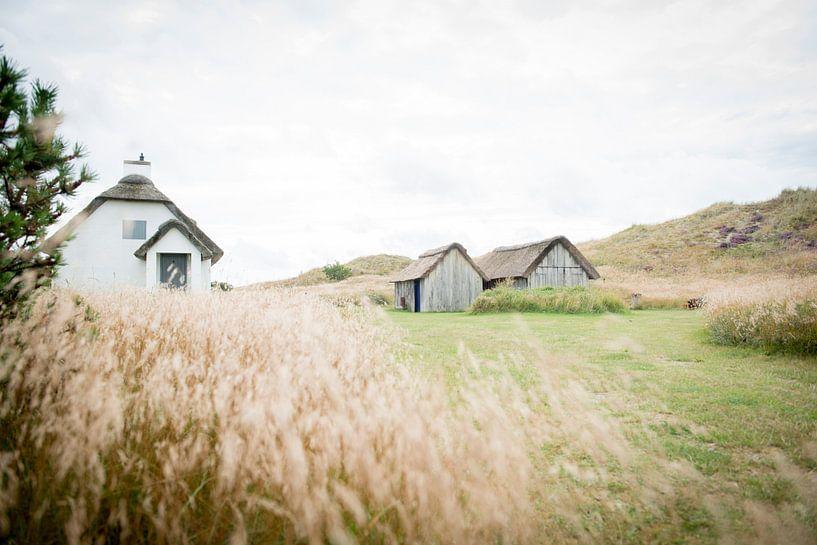 Wonen in rust in Denemarken van Ellis Peeters