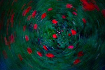 Klaprozen in circle van Peter Heins