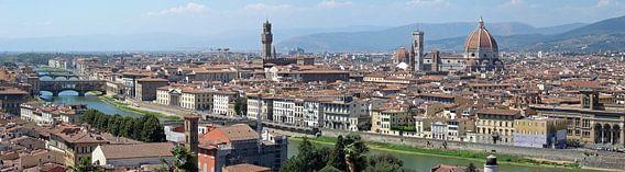 Florence panorama von Carel van der Lippe