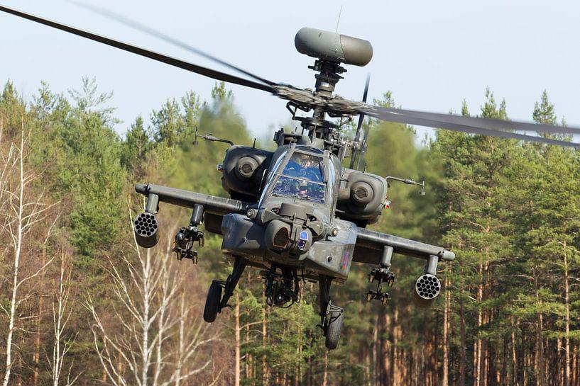 Amerikaanse Landmacht AH-64 Apache van Dirk Jan de Ridder