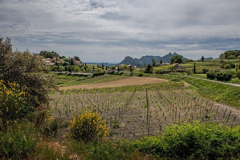 Provence van Johan Vet