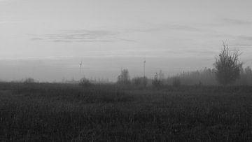 Polderlandschaft in Schwarz-Weiß von Gerard de Zwaan