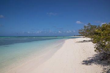Aruba van Joyce Perez