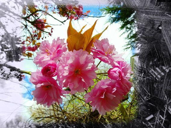 FlowerPower Fantasy 22 van MoArt (Maurice Heuts)