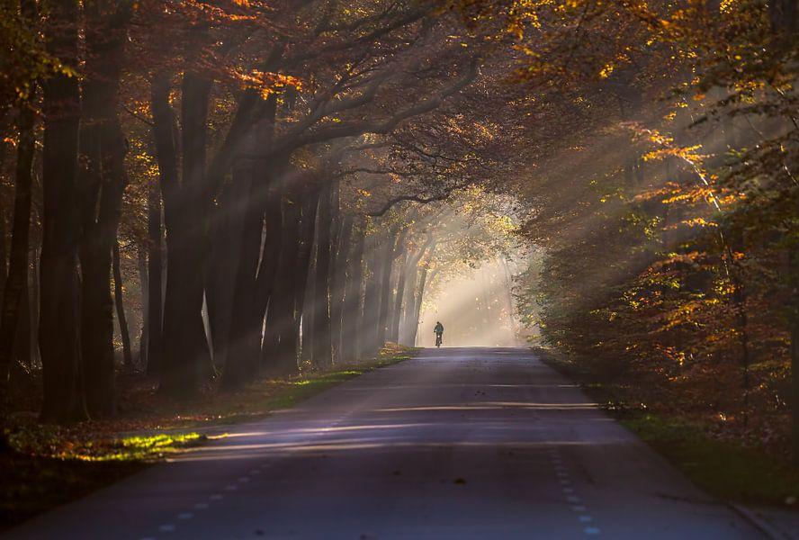 Op weg naar school