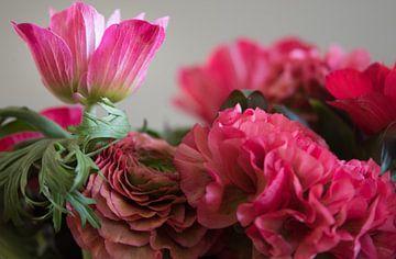 Glückliche Blume von