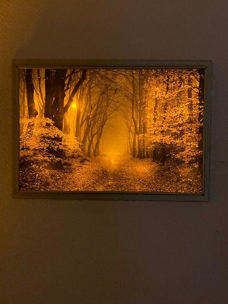 Klantfoto: De rand van de herfst van Tvurk Photography, op canvas