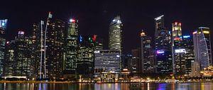 Skyline van Singapore van