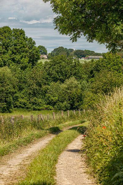 Holle weg bij Simpelveld in Zuid-Limburg sur John Kreukniet