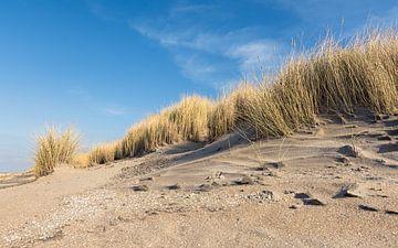 Duinen in Hoek van Holland van Samantha van Leeuwen