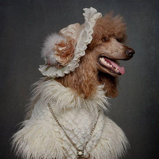 Madame de Poodle van Carine Belzon