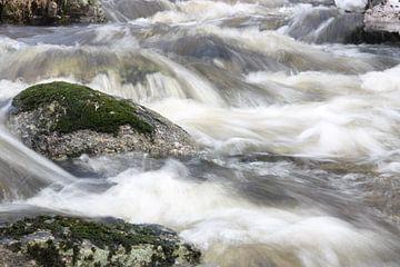 wilder Fluss von Kim van der Lee