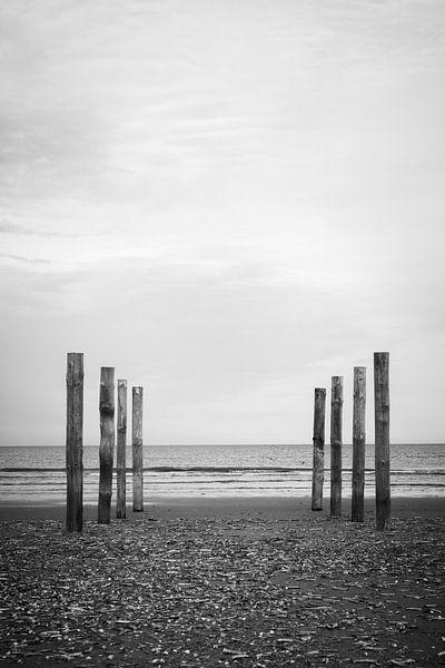Wood poles in the sand, Schiermonnikoog van Luis Fernando Valdés Villarreal Boullosa