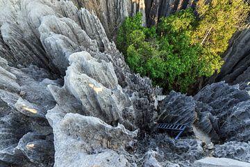 Tsingy Vertigo van Dennis van de Water
