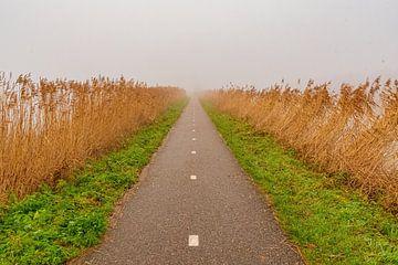 Radweg im Nebel von Merijn Loch