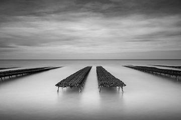 Austernbanken in der Normandie von Antwan Janssen