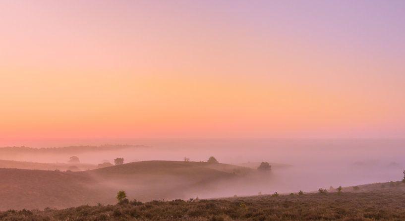 Posbank rosa und orange Sonnenaufgang von Gea Gaetani d'Aragona