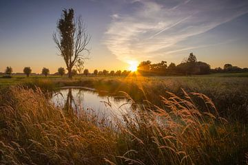 Serenity von Sander Meertins