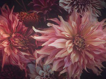 Launische Dahlien von Marina de Wit
