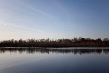 Uitzicht in De Peel, Limburg van Kees van Dun