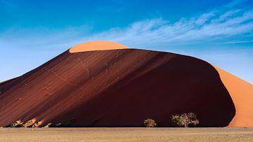 Dune 45 von Thomas Froemmel