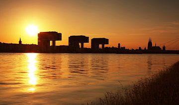 Köln im Sonnenuntergang