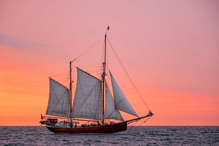 Segelschiff auf der Hanse Sail von Rico Ködder