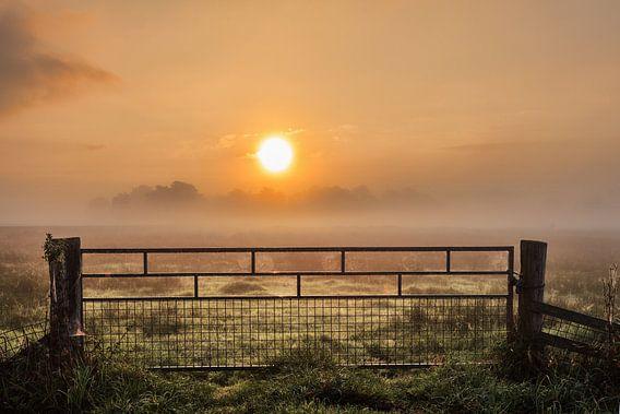 In the morning.......... Hek tijdens zonsopkomst in de mist van R Smallenbroek