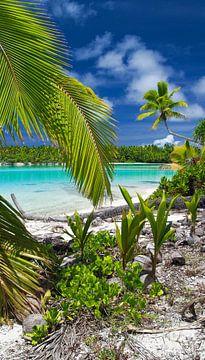 One Foot Island, Aitutaki - Cook Islands van