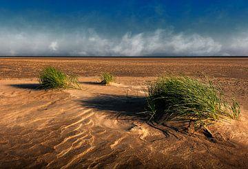 Strand bij Goedereede
