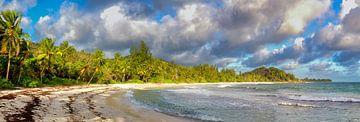 Praslin, Seychellen von Dirk Rüter