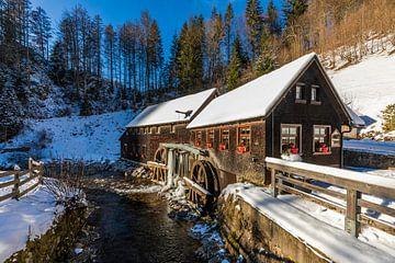Hexenloch Mill in het Zwarte Woud van Werner Dieterich