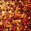 Red, orange and yellow  van Pim Feijen thumbnail