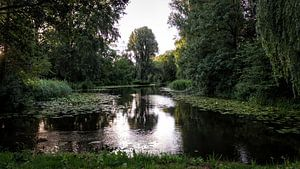 Landschap van Heerhugowaard - NL van