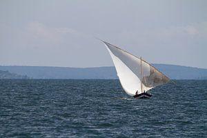 Afrika | Zeilboot op het Victoriameer in Tanzania in de Nederlandse vlag