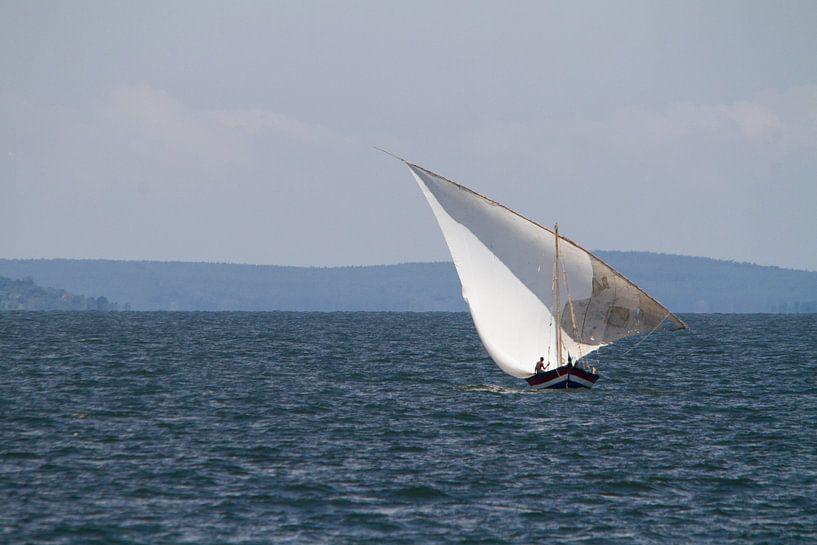 Afrika | Zeilboot op het Victoriameer in Tanzania in de Nederlandse vlag van Servan Ott