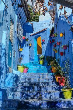 50 tinten blauw von Stefania van Lieshout