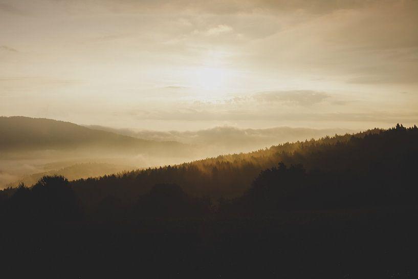 Heuvels von Laurance Didden