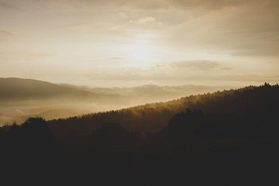 Heuvels van Laurance Didden