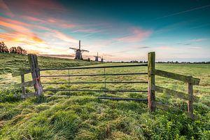 Hollands polderlandschap met molens van
